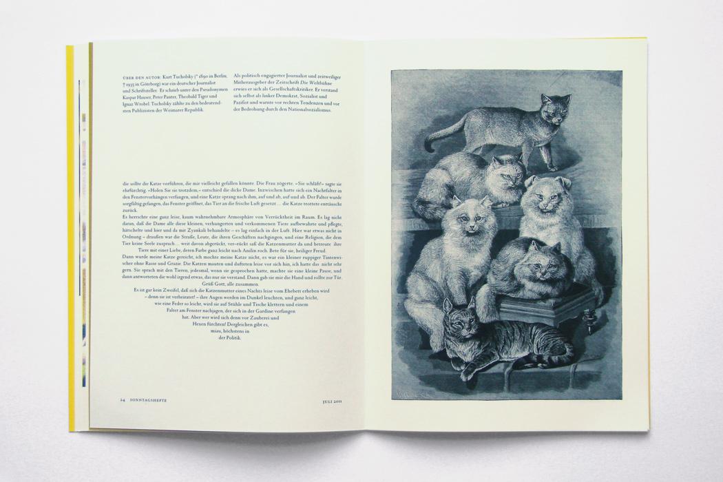 Die Katzenmutter von Paris